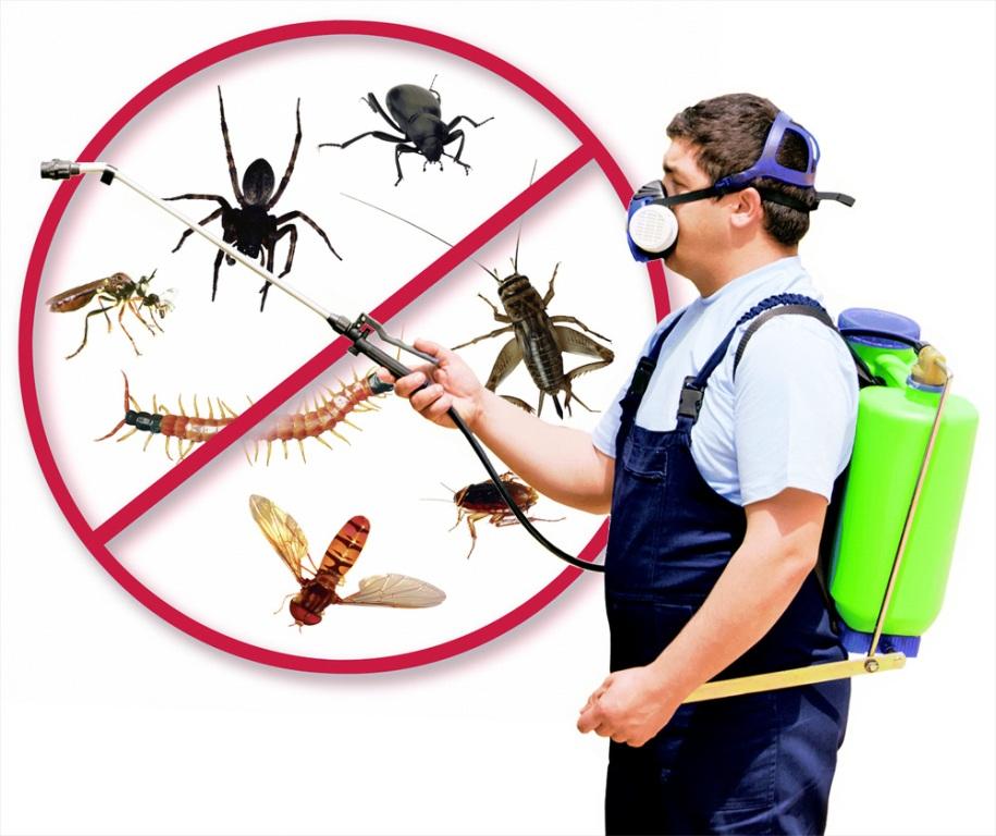 Physical pest control